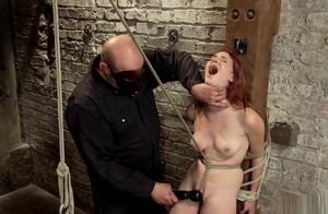 Ginger-haired in  suspension is vibrated